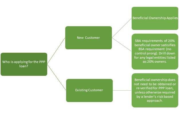 BSA Requirements and Paycheck Protection Program Loans flowchart